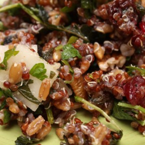 Winter Stew and Radish and Pecan Grain Salad