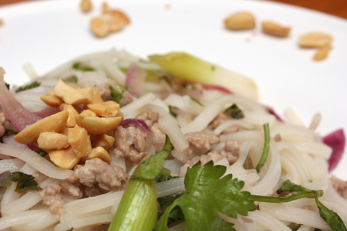 Pork with Rice Noodles, Scallions, and Chile